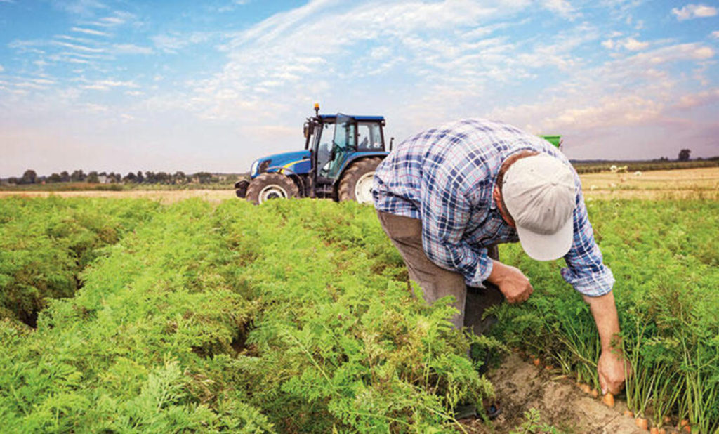 Çiftçi Kredisi